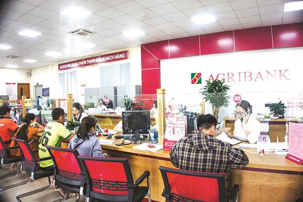 Điều kiện và thủ tục phát hành thẻ tín dụng ngân hàng AgriBank